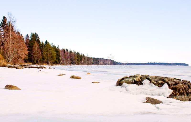 Kustlinjelandskap av Lake Onega royaltyfri foto
