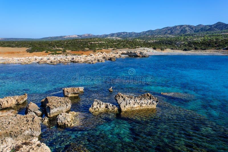 Kustlinjen av den härliga stranden på medelhavet cyprus royaltyfri foto