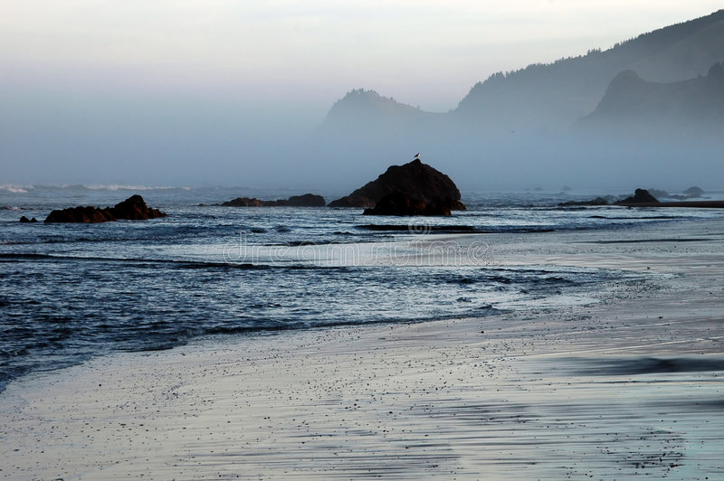 Download Kustoregon soluppgång arkivfoto. Bild av kustlinje, seagull - 233688