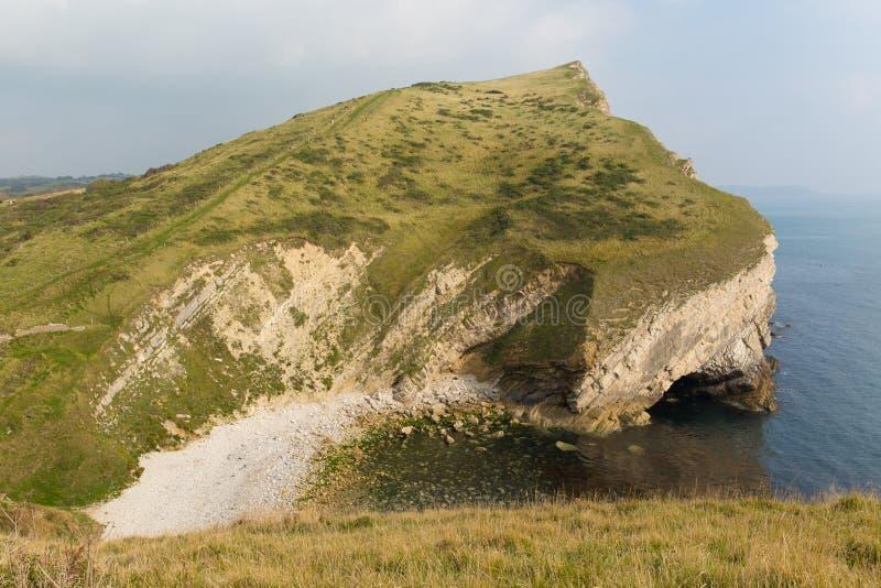 Kustsikt bredvid Worbarrow svartabörshajöst av den Lulworth lilla viken på den Dorset kustlinjen England UK royaltyfri fotografi