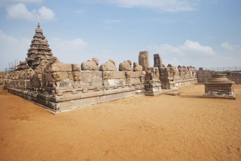 Kusttempel på Mahabalipuram arkivfoto