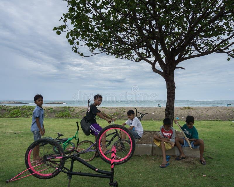 KUTA/INDONESIA- 14-ОЕ ЯНВАРЯ 2018: Некоторые балийские дети вместе с их велосипедами, сидели в дереве около пляжа, беседуя стоковая фотография rf