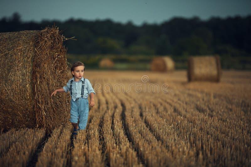 Kute kleine jongen die tussen de schaafjes loopt - landschapsschot stock fotografie