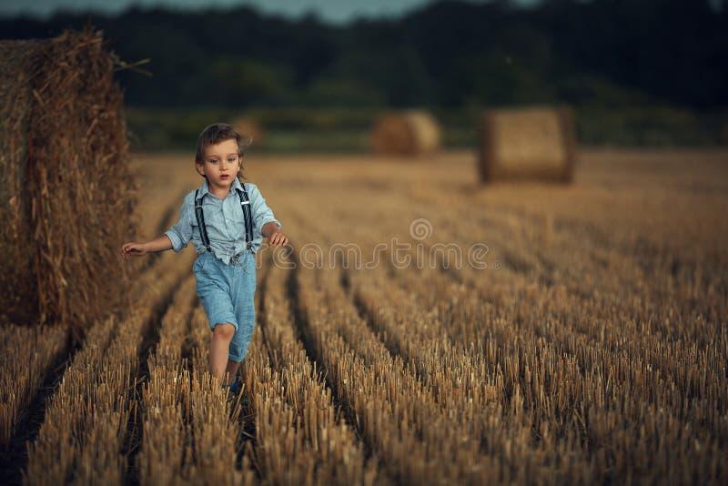 Kute kleine jongen die tussen de schaafjes loopt - landschapsschot royalty-vrije stock fotografie