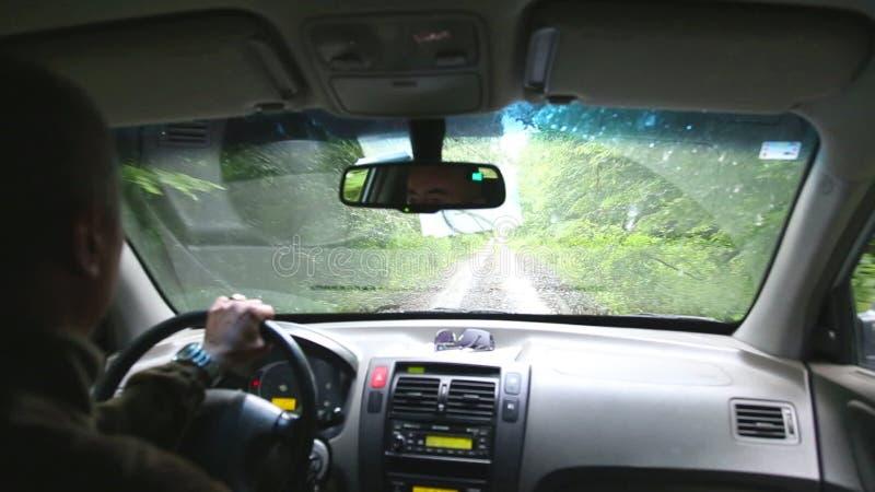 KUTINA KROATIEN - JUNI 2014: Sikt av chauffören från körning av bilen på skogvägen lager videofilmer