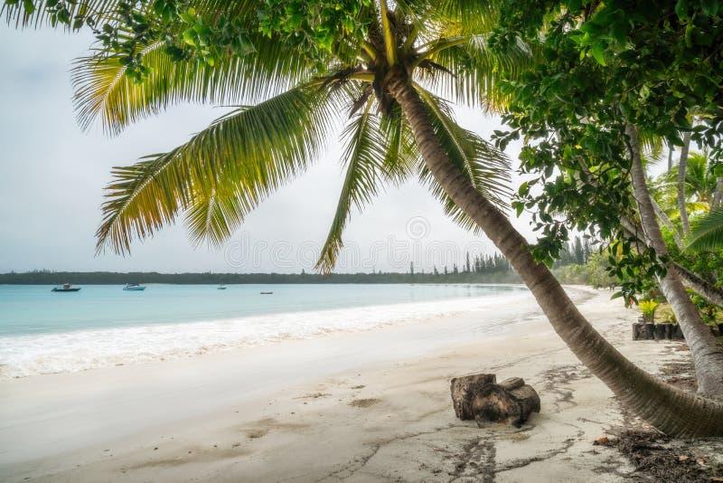 Kuto Bay Beach View at Isle of Pines in New Caledonia. stock image