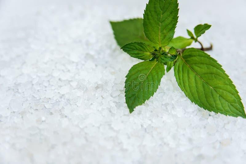 Kuuroord, Bemerkte Overzeese zoute, Selectieve nadruk stock afbeeldingen