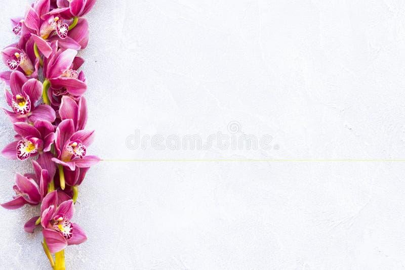 Kuuroord en wellness die met orchidee het plaatsen bloeien, olie op houten witte achtergrondclose-up hoogste mening royalty-vrije stock foto's