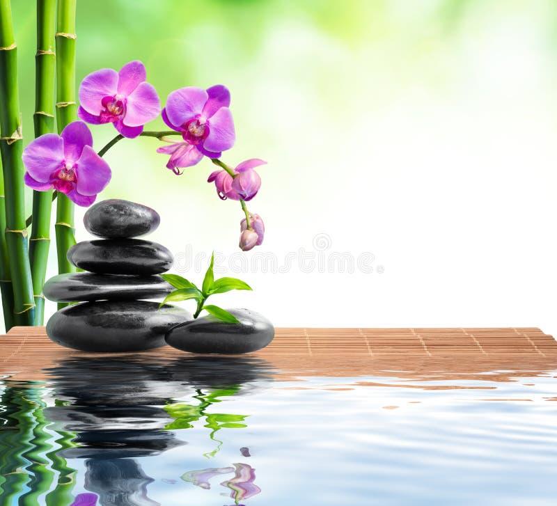 Kuuroordachtergrond met bamboe, orchideeën en water stock afbeelding