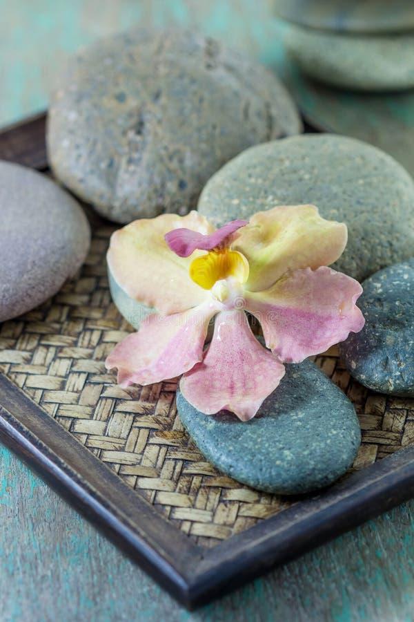 Kuuroordconcept met zenstenen en orchidee stock afbeelding