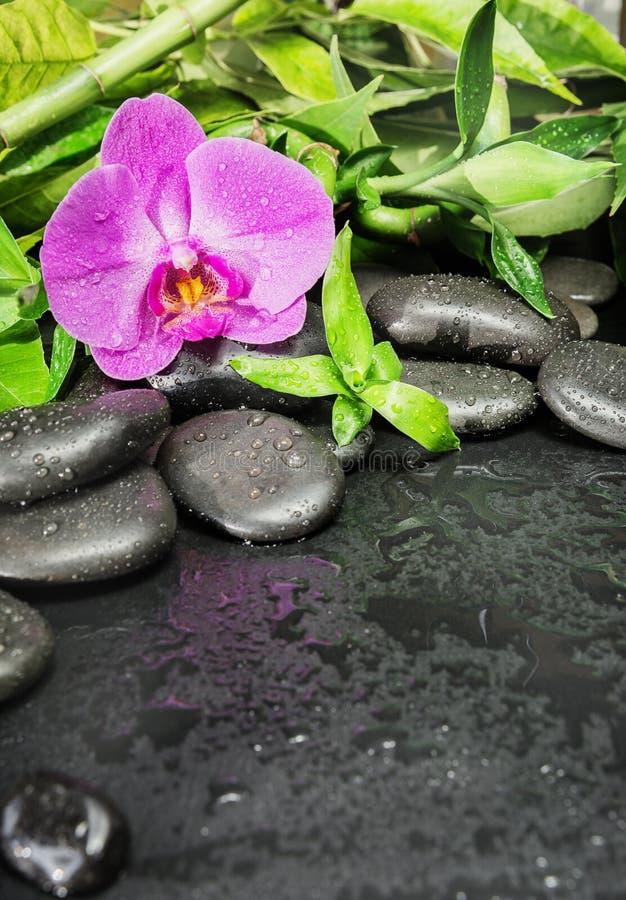 Kuuroordconcept met zenstenen, orchideebloem en bamboe royalty-vrije stock foto