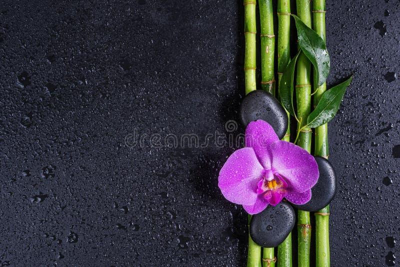 Kuuroordconcept met zenstenen, orchideebloem en bamboe stock foto