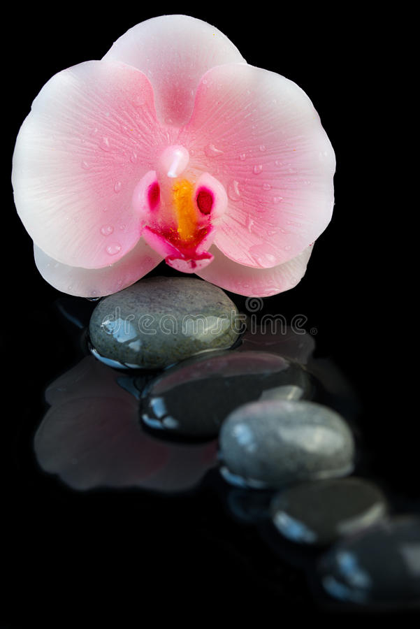 Kuuroordconcept mooie orchideekaars en zen stenen met bezinning over water stock fotografie