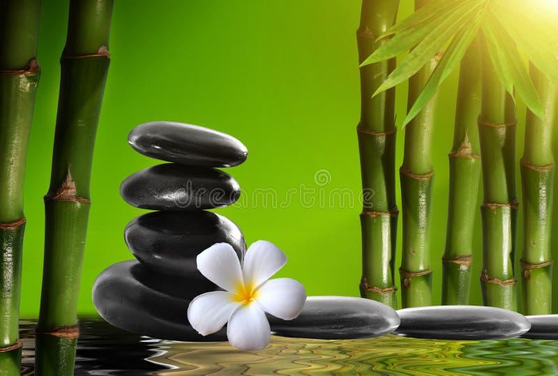 Kuuroordstenen, bamboe met frangipani stock fotografie