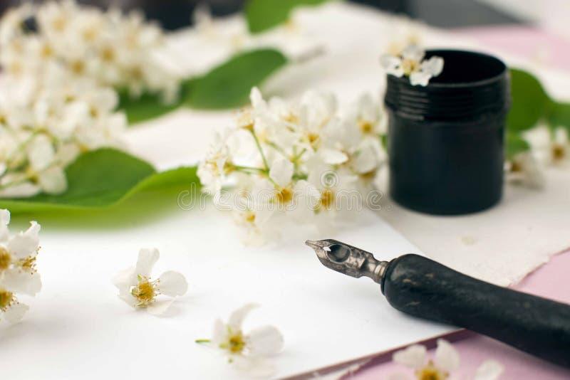 Kuvert, papper, vita blommor, svart färgpulver och reservoarpenna Utformad kvinnlig skrivbordworkspace med vita blommor, kalligra royaltyfri fotografi