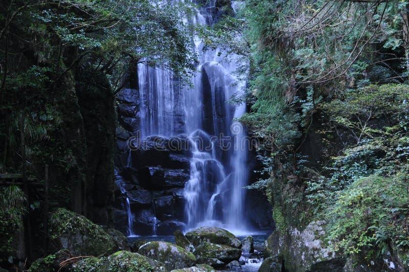 Kuwanoki-aucun-Taki image stock