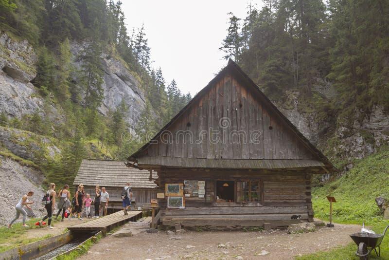 Kvacianska dolina, SLOVAKIEN - AUGUSTI 2018: maler gammalt trävatten för turistsighten på den Kvacianska dolinaen i Slovakien royaltyfria foton