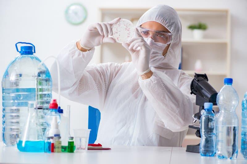 Kvaliteten för vatten för provning för labbassistent royaltyfri bild