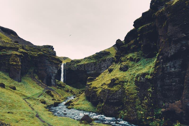 Kvernufoss vattenfall i Island arkivfoton
