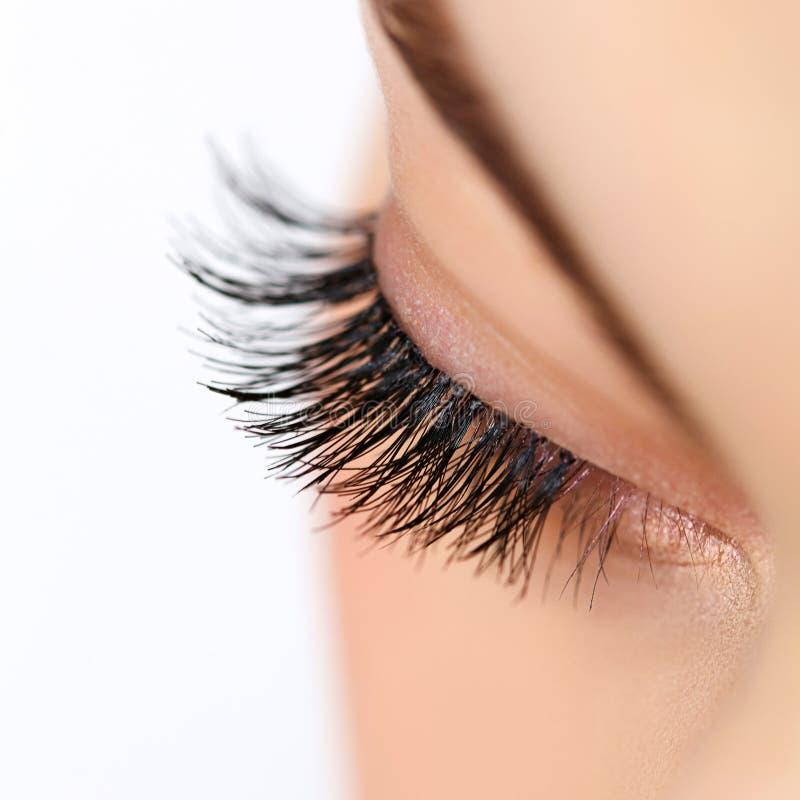 Kvinnaöga med långa ögonfrans. Ögonfransförlängning fotografering för bildbyråer