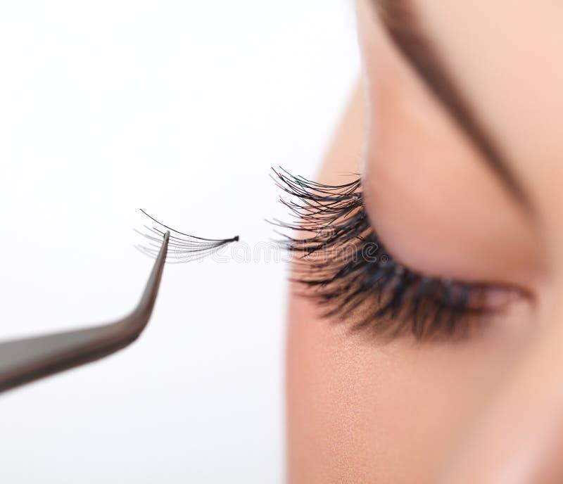 Kvinnaöga med långa ögonfrans. Ögonfransförlängning arkivfoto