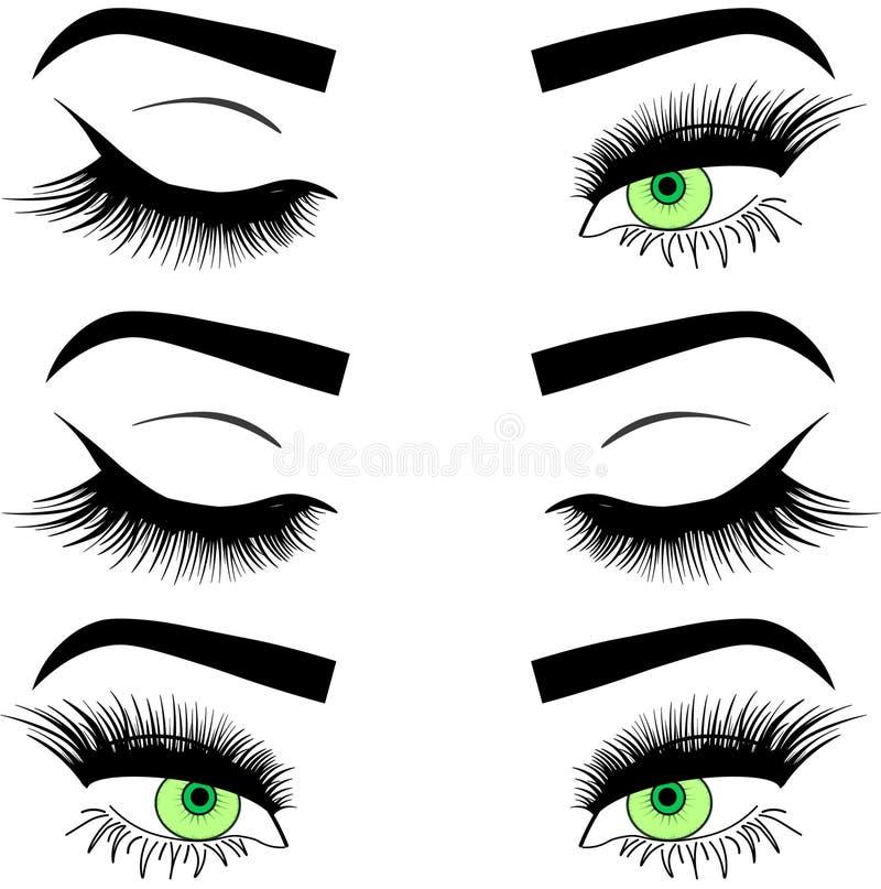 Kvinnaögon och krön för rengöringsduk avbildar kvinnliga samlingsuppsättningen Ögon för modemodaflicka planlägger vektor illustrationer