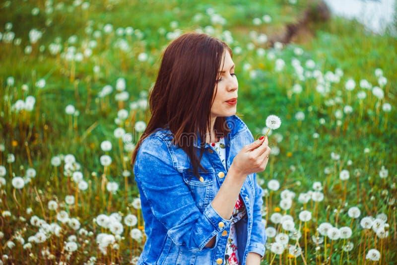 Kvinna bland maskrosor fotografering för bildbyråer