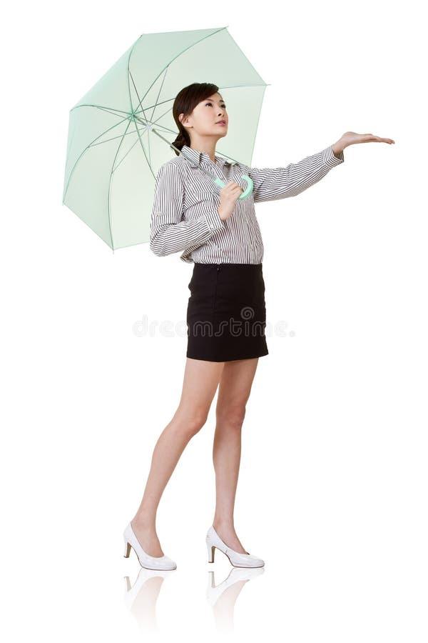 kvinna för affärsholdingparaply royaltyfri fotografi