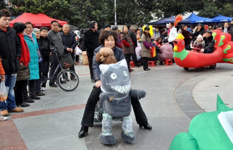 kvinna för ridning för pengzhou för hund för vagnskattporslin royaltyfria bilder