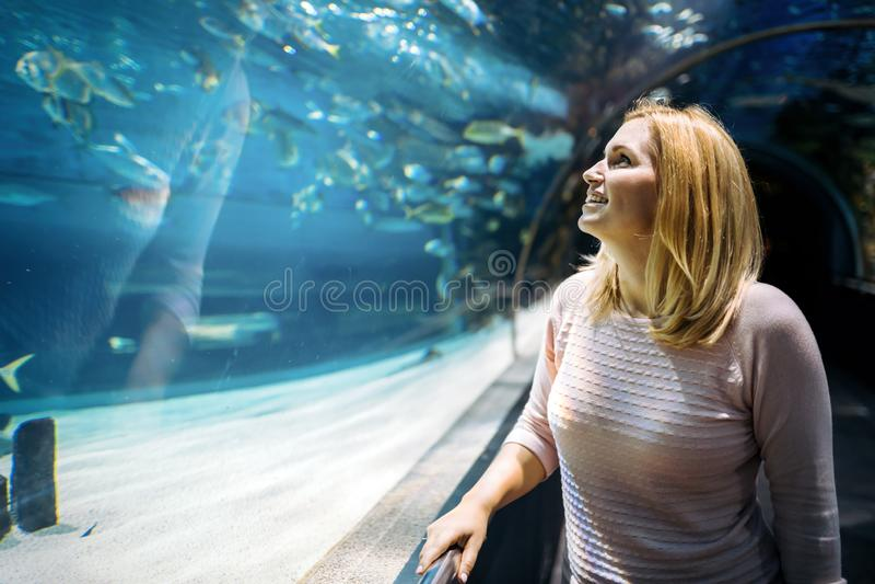 Kvinna i akvariet som håller ögonen på fisken royaltyfri fotografi