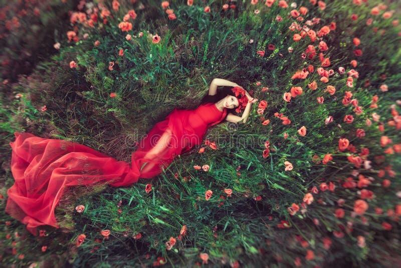 Kvinna i blommavallmofält i sommar arkivfoto