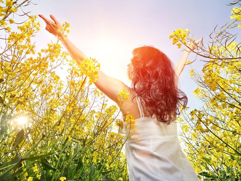 Kvinna i den vita klänningen som tillbaka står med lyftta händer i gult blommafält royaltyfri fotografi