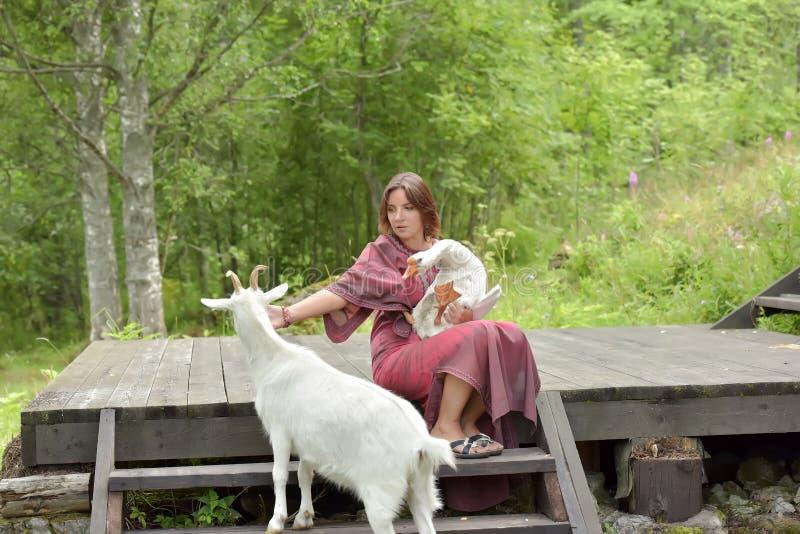 Kvinna i en burgundy kl?nning p? en lantg?rd med en g?s i hennes armar och en vit get royaltyfri bild