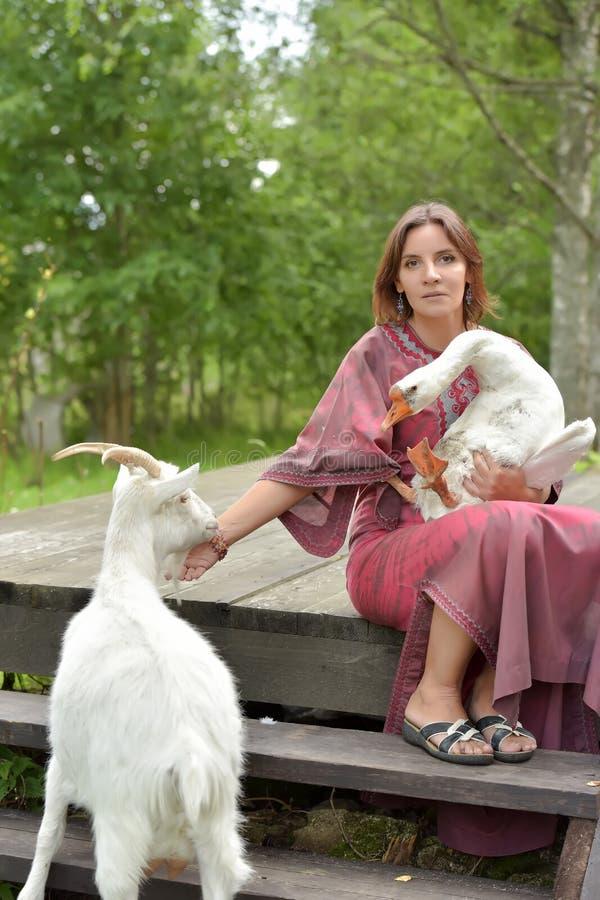 Kvinna i en burgundy kl?nning p? en lantg?rd med en g?s i hennes armar och en vit get royaltyfria foton