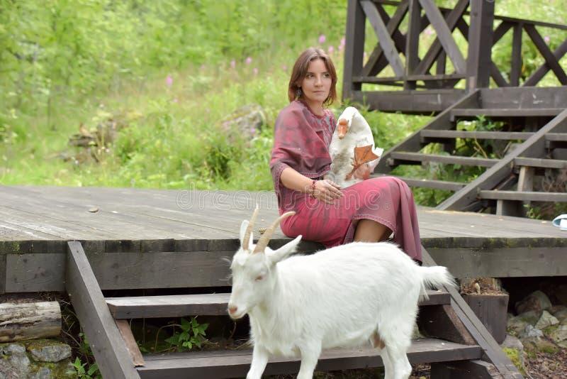 Kvinna i en burgundy kl?nning p? en lantg?rd med en g?s i hennes armar och en vit get fotografering för bildbyråer