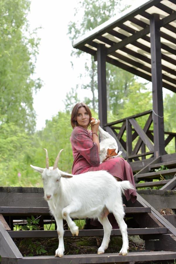 Kvinna i en burgundy kl?nning p? en lantg?rd med en g?s i hennes armar och en vit get arkivbild