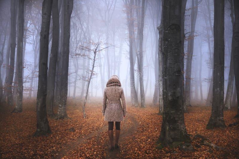 Kvinna i en dimmig skog under höst arkivbild