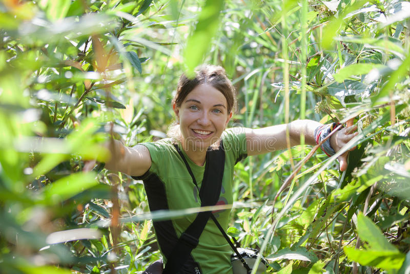 Kvinna i högt gräs, medan gå i djungler arkivfoton