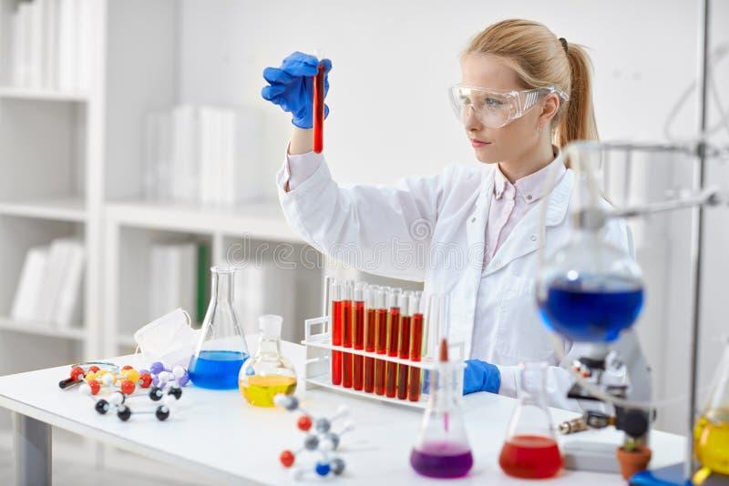 Kvinna i laboratorium som kontrollerar provrör royaltyfri bild
