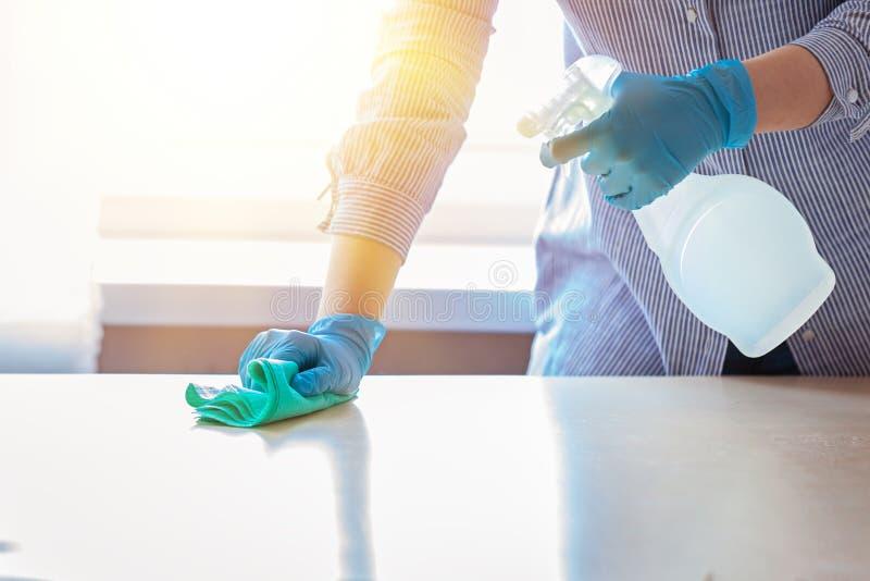 Kvinna i skyddande handskar som torkar damm genom att använda en sprej och en dammtrasa, medan göra ren hennes hus arkivbilder