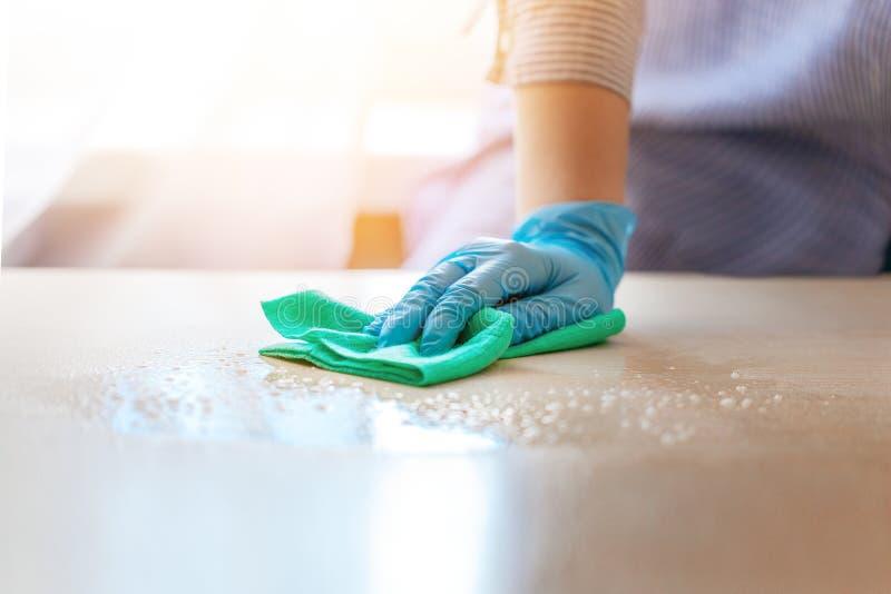 Kvinna i skyddande handskar som torkar damm genom att använda en sprej och en dammtrasa, medan göra ren hennes hus royaltyfri bild