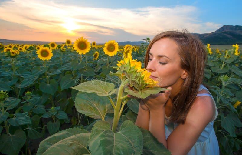 Kvinna i solrosfält på solnedgångtid royaltyfria foton