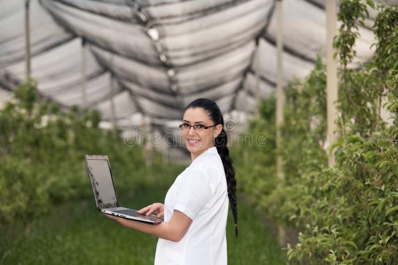 Kvinna med bärbara datorn i äpplefruktträdgård arkivbilder