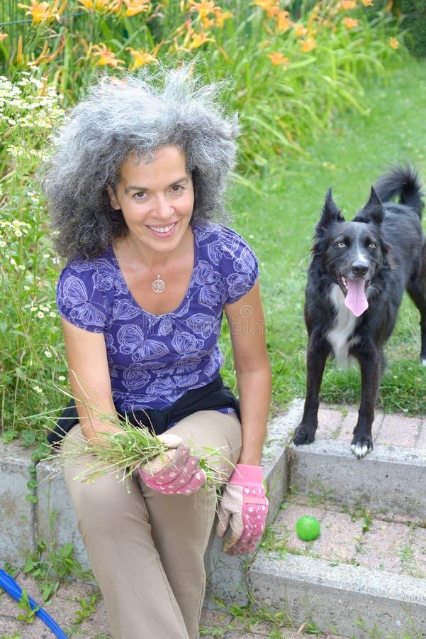 Kvinna med Border collie i en trädgård royaltyfri foto