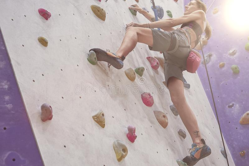 Kvinna med den perfekta passformkroppen, härlig muskulös tillbaka utbildning på en klättringvägg i sportkorridor arkivfoton