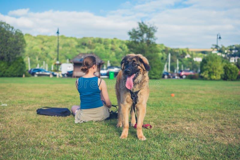 Kvinna med den stora hunden i parkera royaltyfri fotografi