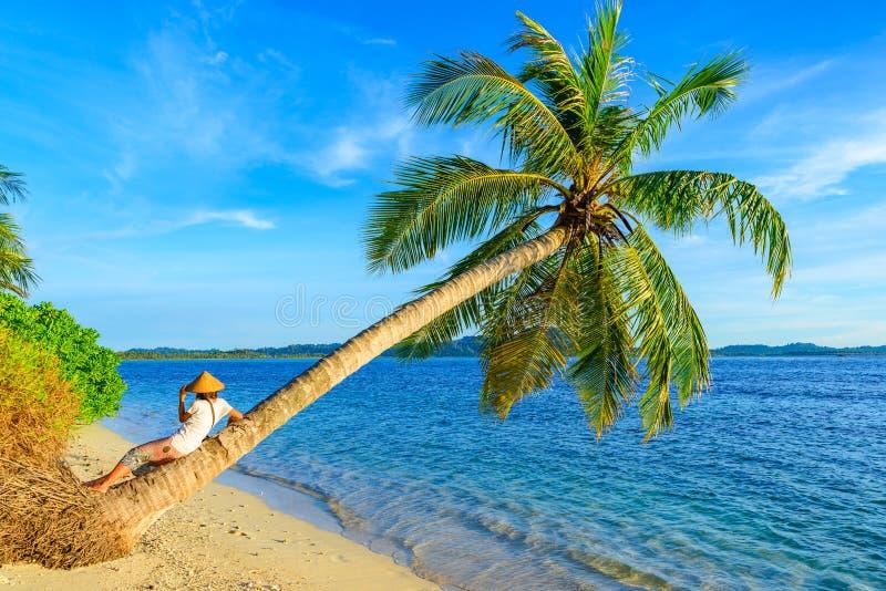 Kvinna med den traditionella asiatiska hatten som kopplar av p? den tropiska stranden som sitter p? kokosn?tpalmtr?det i sunburst royaltyfri bild