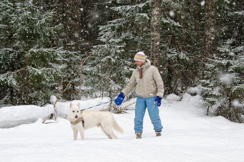 Kvinna med en hund på en gå i trän under ett snöfall royaltyfri fotografi