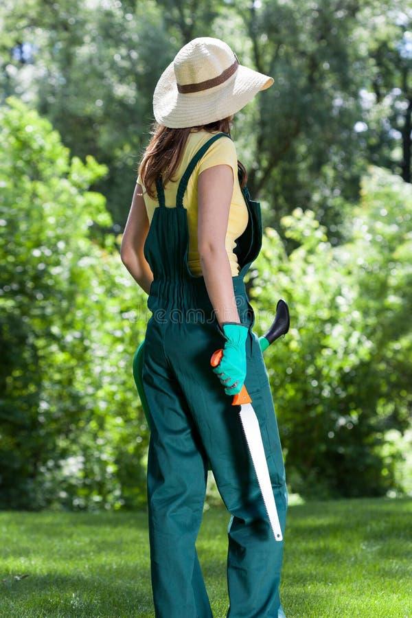 Kvinna med hjälpmedel i trädgård royaltyfri fotografi