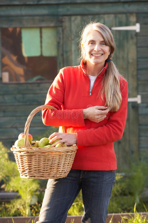 Kvinna med home-grown frukt royaltyfri fotografi